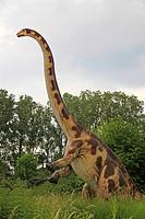 Diplodocus Diplodocus, erect