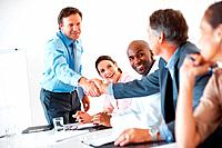 Mature team leader shaking hands with colleague during presentation