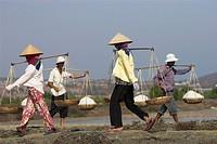 Workers carry salt baskets along dykes between salt ponds Viatnam