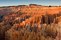 view of ´Silent´ City´ from the Sunrise Point just after sunrise, USA, Utah, Bryce Canyon National Park, Colorado Plateau
