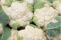 Fresh cauliflower at a farmer´s market in Northampton, Massachusetts