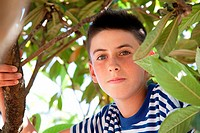 Boy climbing tree, portrait