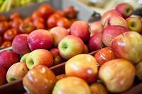 Apples at a fresh produce market, close up view. Winnipeg, Manitoba, Canada.