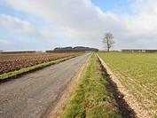 english landscape 2