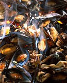 Mussles grilled on wood fire
