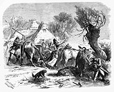 events, Second Schleswig War 1864, Austrian soldiers rounding up cattle for food, Jutland, March 1864, wood engraving after drawing by Otto Guenther,