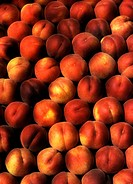 Arrangement of Peaches