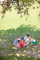 Family picnicking in park (thumbnail)