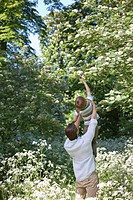 Father lifting son to reach flowers outdoors