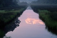 Reflection in Channel Through Bayou