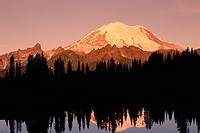 Mount Rainier reflects in Tipsoo Lake at sunrise. Mount Rainier National Park, Washington, USA.