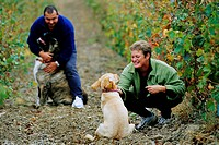 Gerard and Ghislain Gauby are the owners of Domaines Gauby, wine makers.