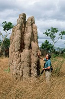 A photographer touches a tall termite mound on grasslands in the Northern Territory of Australia