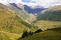 Guarrinza - Selva de Oza - Hecho Valley - Huesca - Aragon Pyrenees - Spain - Europe