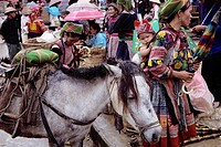 A Yao woman with a pack horse shops at the Sunday market in the village of Bac Ha in northern Vietnam. Vietnam´s Yao minority live in the country´s mo...