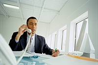 Businessman Speaking on Telephone at Desk