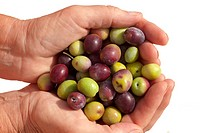 Good handful of ripe olives