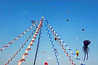 festival degli aquiloni, raduno internazionale degli aquilonisti, rezzato, lombardia, italia