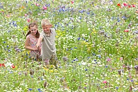 Boy and girl pointing in wildflower field