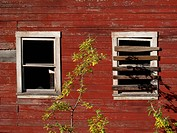 Close up of boarded windows on a mine building, Kennecott Mines National Historic Landmark, Wrangell_St. Elias National Park & Preserve, Southcentral ...