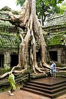 Ta Prohm Temple Complex, Siem Reap, Cambodia