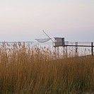 Carrelet fishing platform and tall reeds
