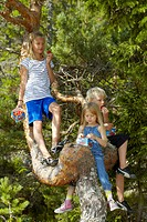 Children climbing tree in forest