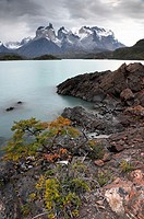 Cuernos del Paine, Lake Pehoe, Chile