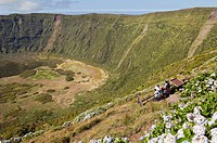 Tourists admiring Caldeira volcano in Faial, Azores