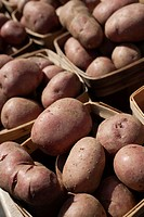 Potatoes at a New Jersey farmer´s market
