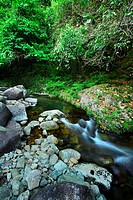 water spring