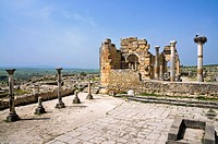Stork nest in Volubilis  Ancient roman empire town  Maroc