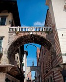 Whale bone in Verona