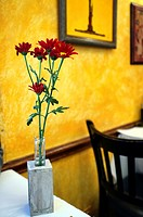 Bud Vase of Red Flowers on a Cafe Restaurant Table