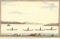 Australian aborigines, 18th century. This artwork shows a group of Australian aborigines in canoes led by Bennelong left, here called Ban nel lang mee...
