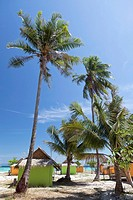 Bungalow resort under palm trees, Ko Lipe island, Thailand