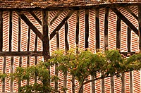 Typical old wall of house at Saint Martial d´Artenset, Dordogne, Aquitaine, France