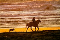 Horseback rider on beach San Francisco California USA