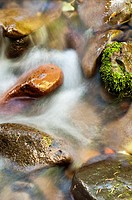 Stream in Strawberry Mountain Wilderness, Malheur National Forest. Oregon, USA
