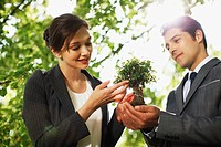 Business people looking at plant together outdoors