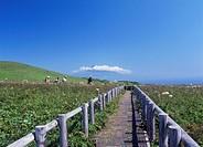 Momoiwa Observatory, Rebun, Hokkaido, Japan