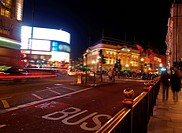 A night view of the Piccadilly Circus