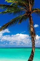 Scenic view on Caribbean sea