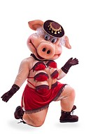 Swine mascot costume dance striptease in hat