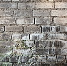 Brick old grunge mouldy wall background