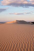 Famous Dune of Pilat, the highest Dune in Europe  La-Teste-de-Buch  Gironde  Aquitaine  France