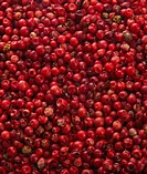 Full frame of pink peppercorn