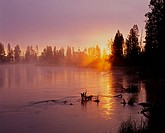 Rising sun breaks through morning fog along the Deschutes River, near Besson Camp, Deschutes National Forest, Oregon, USA