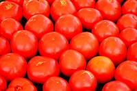 A ripe red tomatoe background