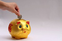 the hand putting coin to piggy bank